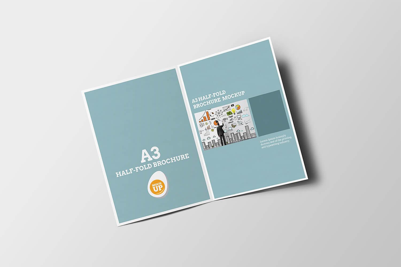 Leaflet Distribution Price
